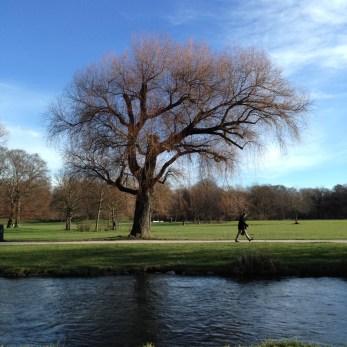 English Garden Tree and Creek