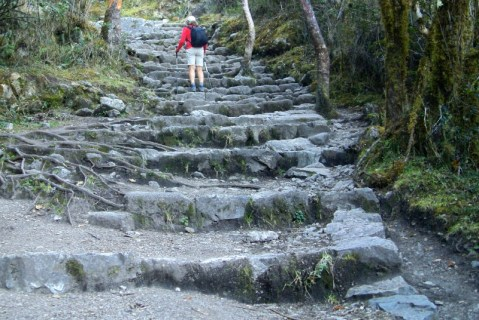 Inca steps on Inca Trail