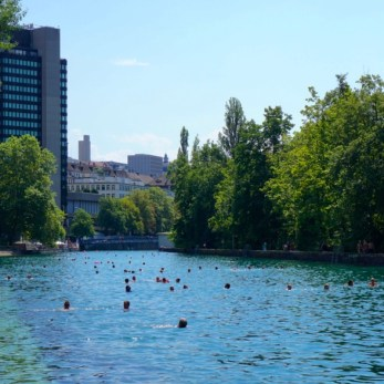 Swimming down the Limmat