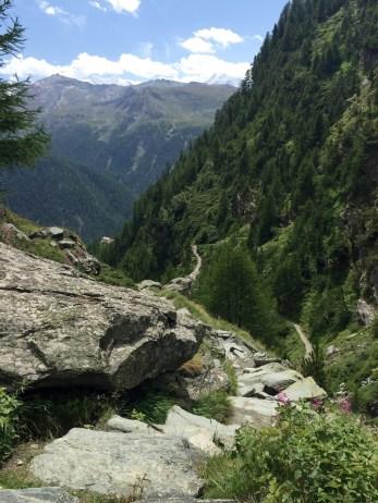 Botanischer Lehrpfad Trail Path