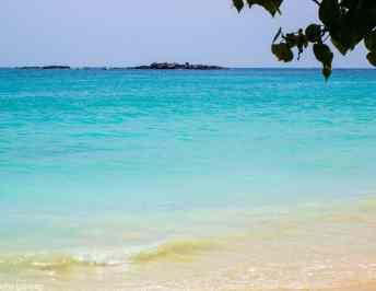 Why Mirissa beach is our favourite beach in Sri Lanka