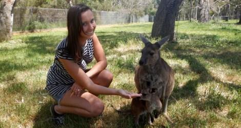 Adelaide: Cleland Wildlife Park
