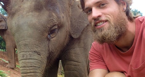 "What It's Really Like to ""Volunteer"" at a Thai Elephant Sanctuary"