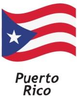 Globalink Puerto Rico Phone Numbers