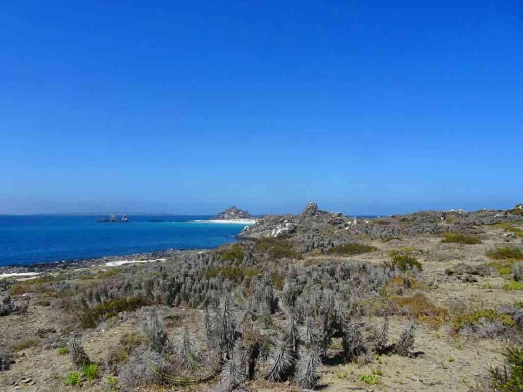 Isla Damas Chile