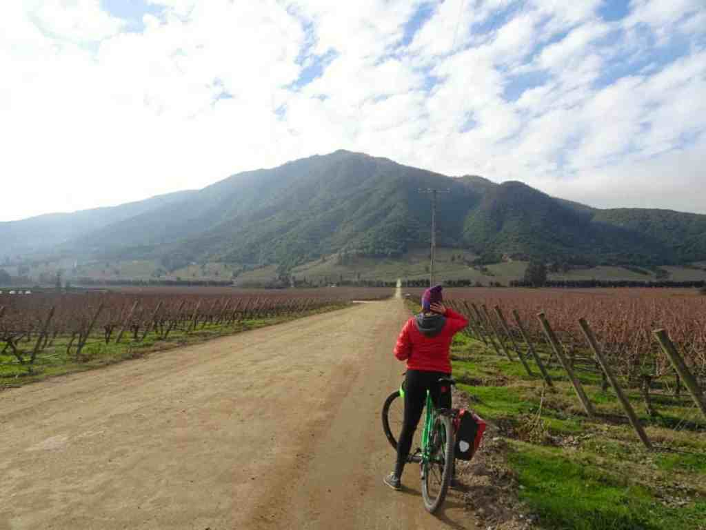 Colchagua Valley cycling
