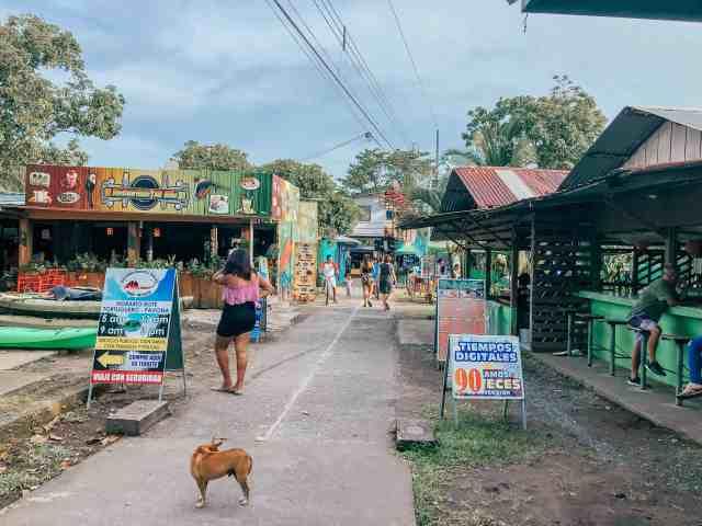 centrum tortuguero