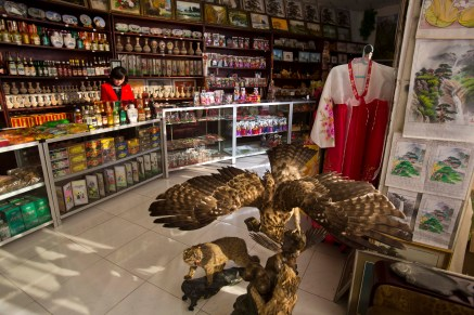 A souvenir shop in Rajin, North Korea inside the Rason Special Economic Zone, Nov. 8, 2013. (AP Photo/David Guttenfelder)
