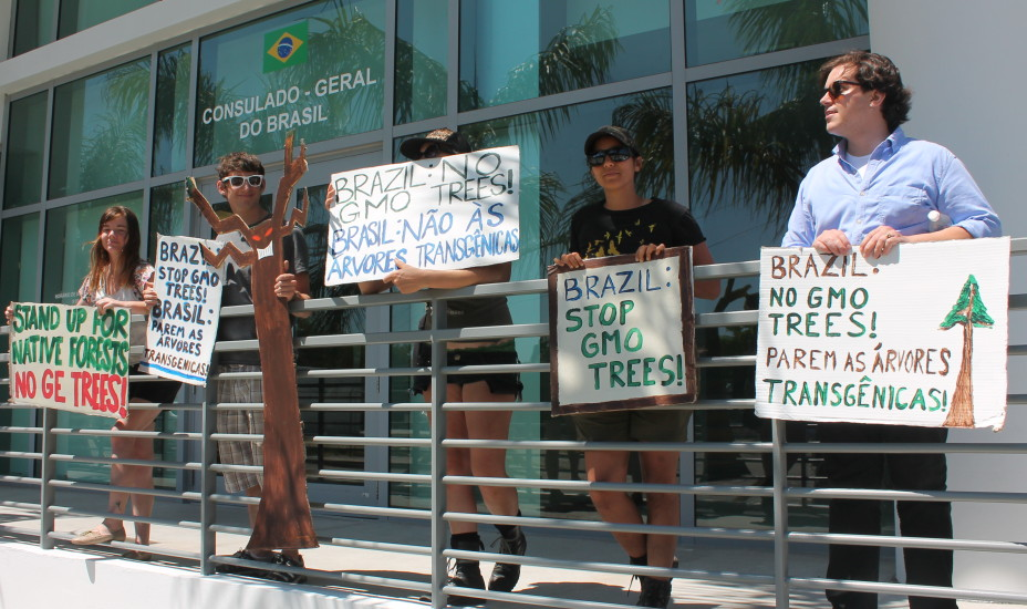 FL GE Trees Brazil Protest People 2