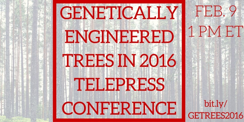 GENETICALLY ENGINEERED TREES IN 2016 (3)