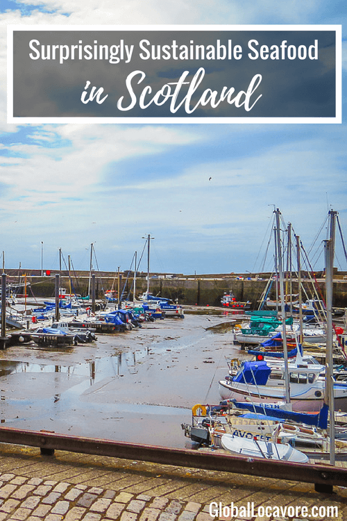 Enjoying a seaside picnic of sustainable seafood in Scotland from the world famous Anstruther Fish Bar was a highlight of a trip from Edinburgh to Fife.