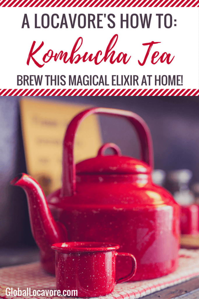 My friend and I take a class in brewing Kombucha, a fermented tea that boasts with several health benefits, and learn to make it from scratch.