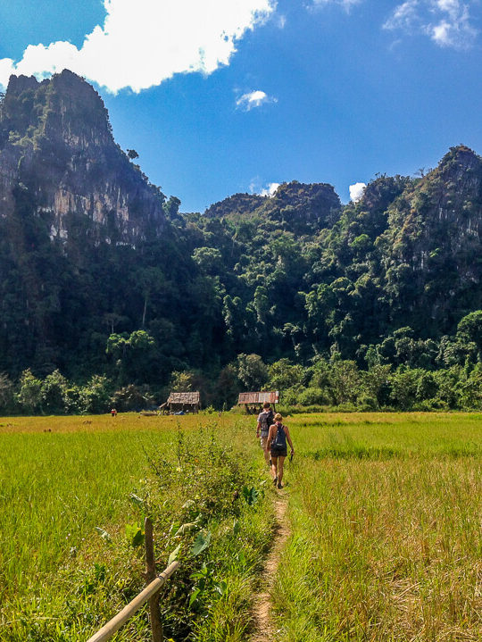 vang vieng hike rice fields central laos