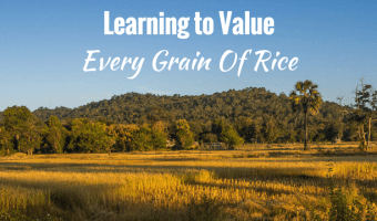 Watching the annual rice harvest in Laos was an emotional and educational experience. I never thought I'd learn to value every grain of rice, but I did