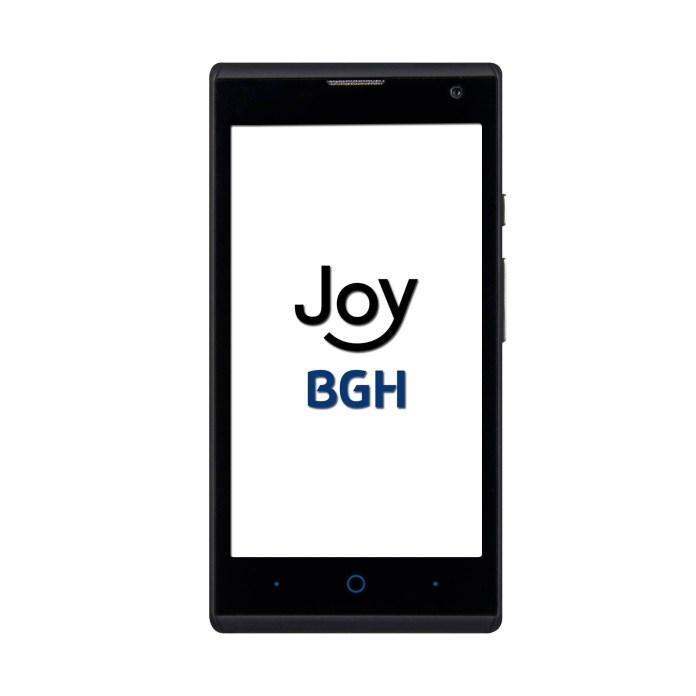 bhg-joy