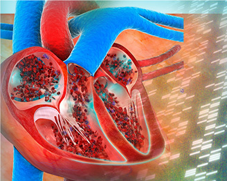 Scaffolds for tissue engineering of cardiac valves. Global Medical Discovery