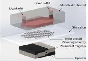 Inkjet-Print Micromagnet Array on Glass Slides for Immunomagnetic Enrichment of Circulating Tumor Cells. Global Medical Discovery