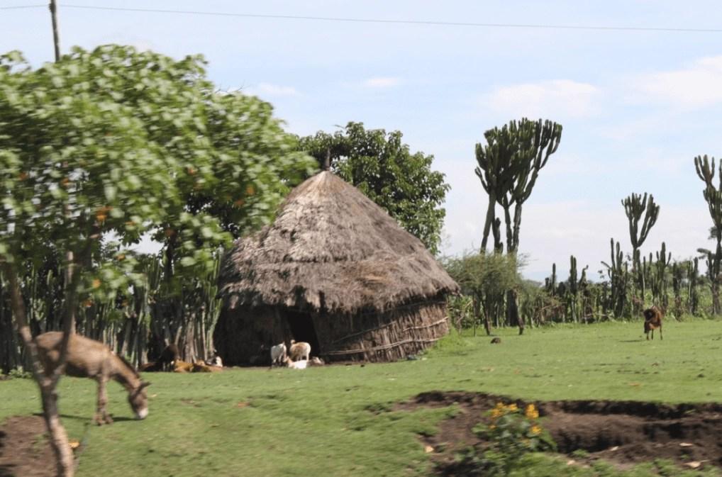 ethiopia_house_hut_Awassa_culture