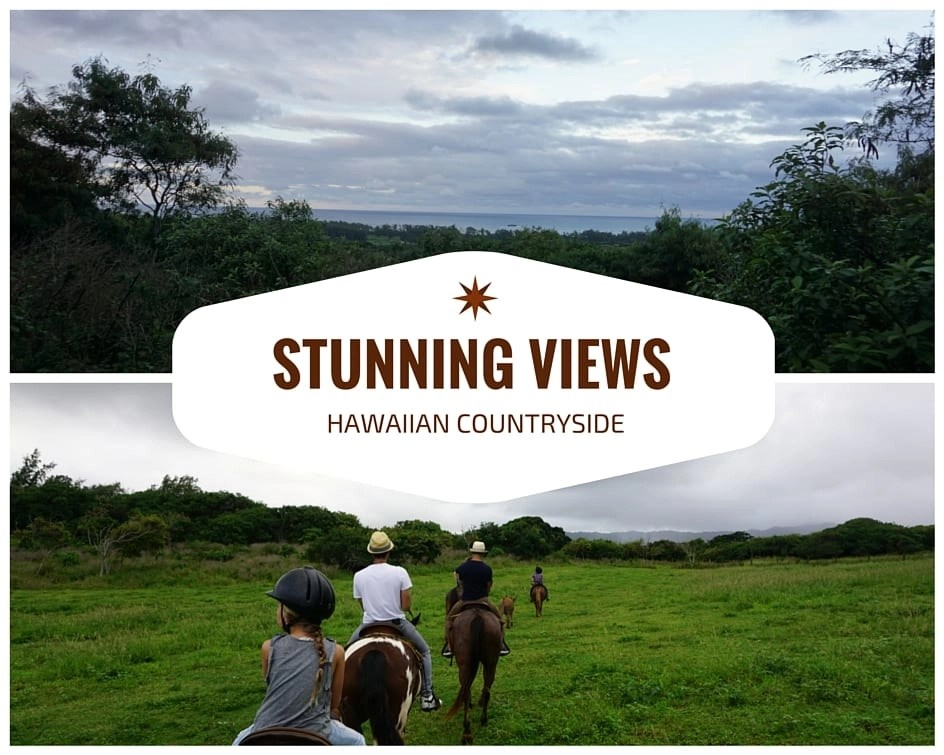 Check out Gunstock Ranch in Oahu. A must do on your list of things to do in Oahu | Global Munchkins