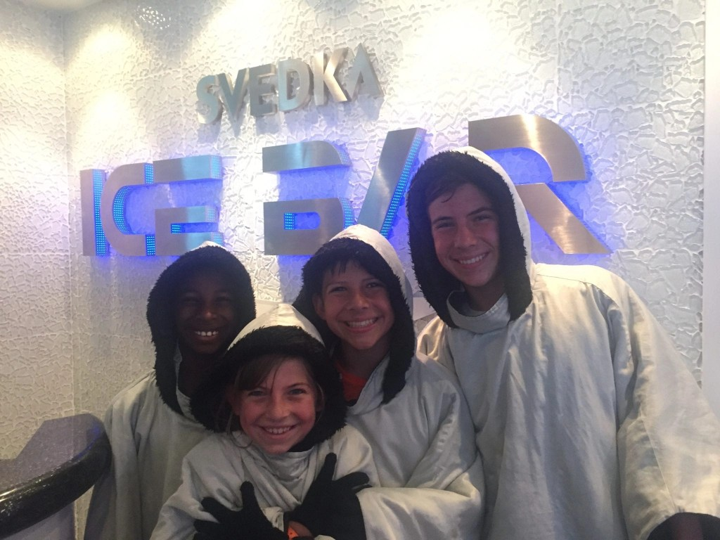 Svedka Ice Bar on board the NCL Getaway