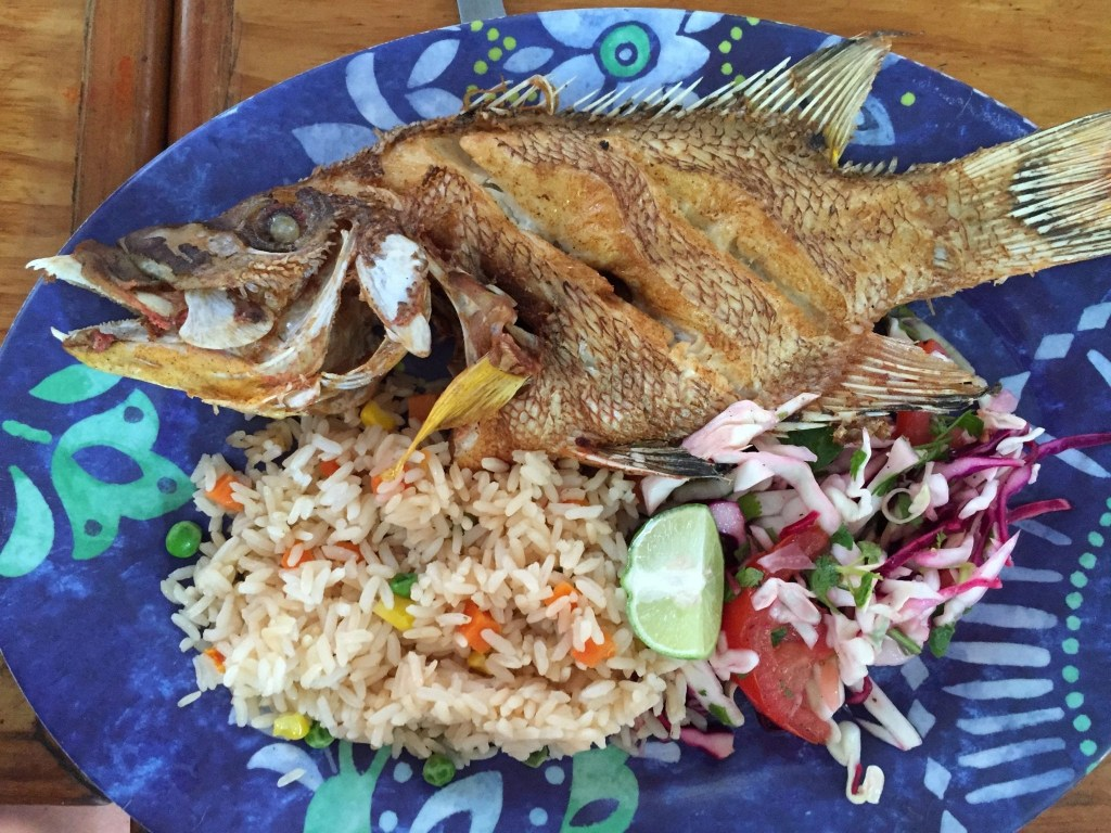 tasty fish dish in Cozumel as part of the Cozumel Chef food tour