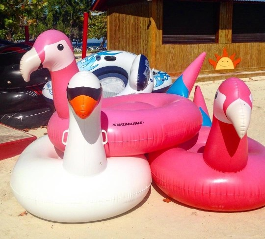 Awesome pool floats at El Conquistador Resort