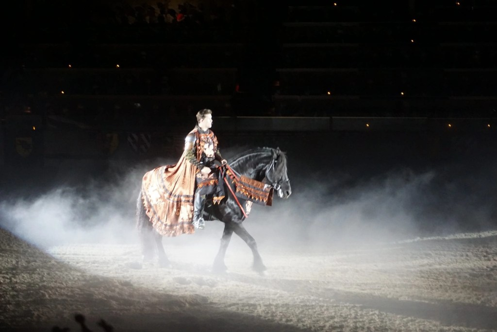 Man riding a beautiful black horse in a dark arena at Medieval Times in Buena Park   Global Munchkins