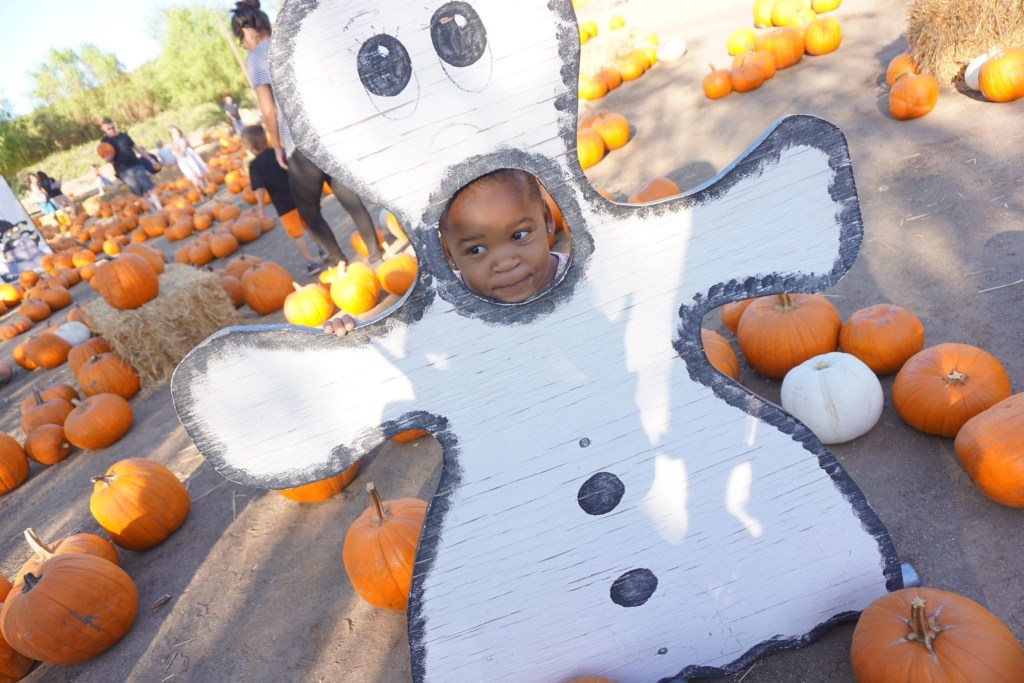 f3c73b16 The Ultimate Guide to Halloween Activities in Temecula 2016 | Global  Munchkins