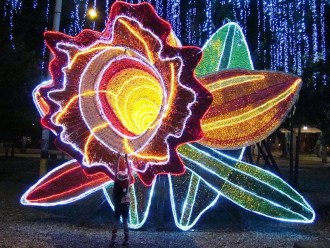 Incredible holiday lights, over 31 million, in Medellin Colombia