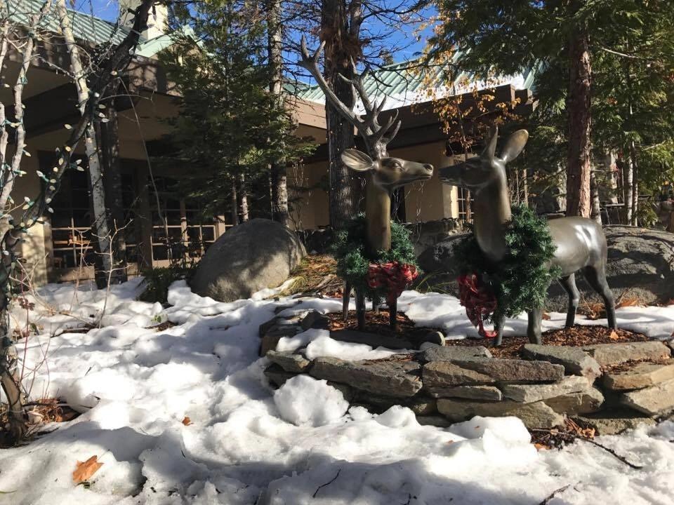 Snow at Tenaya Lodge one of the most luxurious Yosemite Resorts.