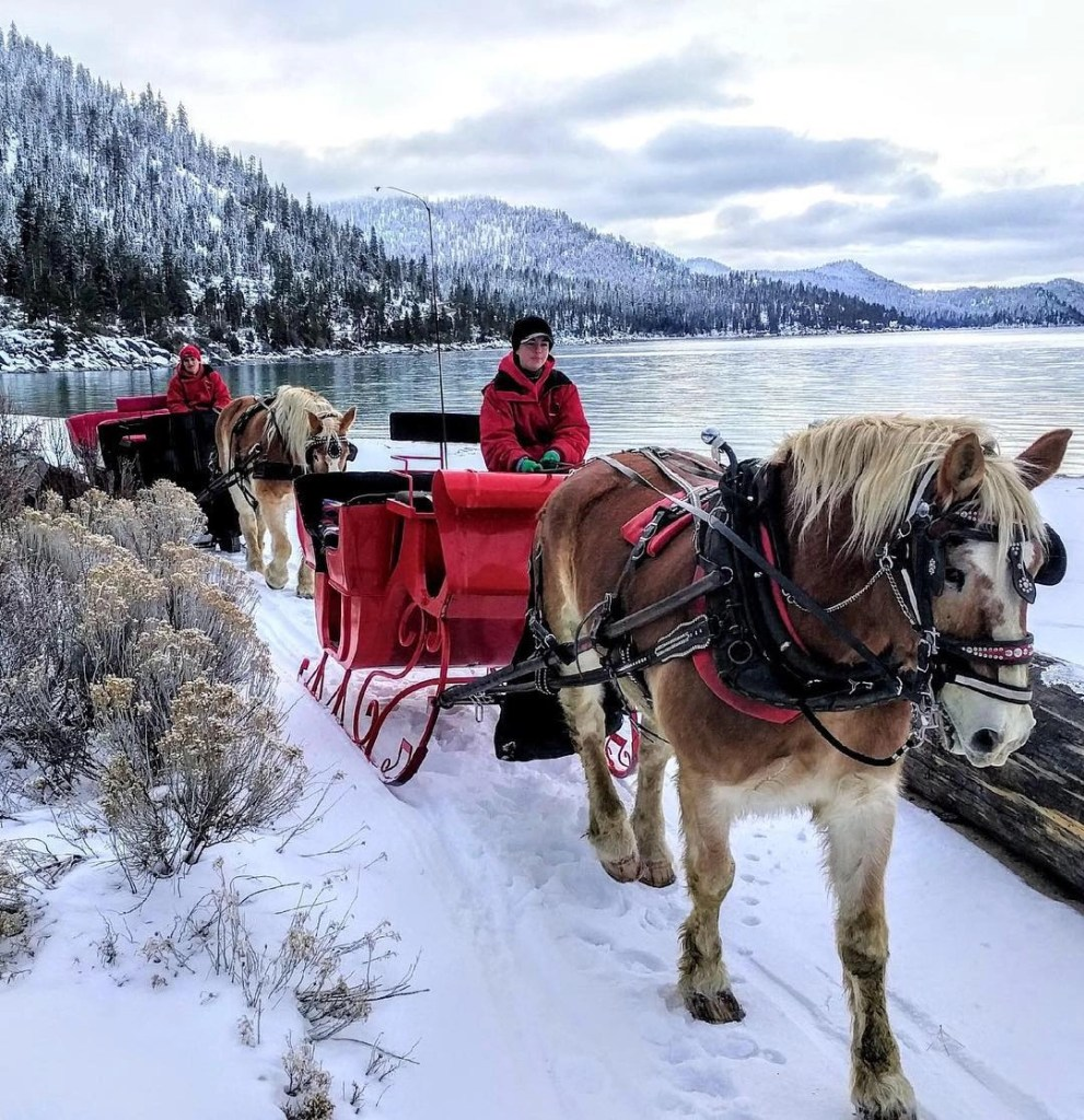 North Lake Tahoe Bucketlist- take a horse drawn sleigh ride by the lake