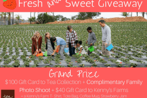 5 Reasons to Take YOUR Kids Strawberry Picking + Tips on Picking the BEST Berries + GIVEAWAY