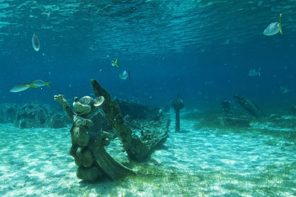 At Disney's private island paradise, Castaway Cay, guests can rent snorkel gear and splash into the lagoon to explore 22 acres of underwater life. Families can spot tropical fish on a snorkel trail, and they might even discover hidden surprises and treasures under the sea during their adventure. (Matt Stroshane, photographer) 0409ZZ_1274MS.jpg