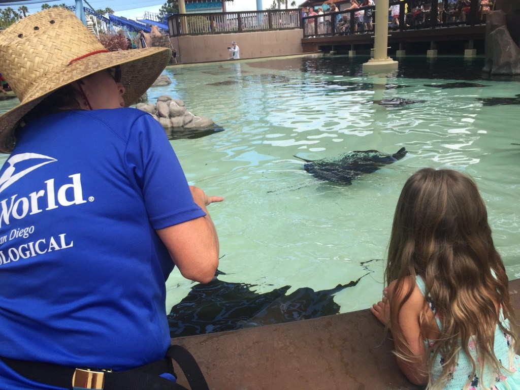 50 Things to do with Kids in San Diego (20 are FREE!)