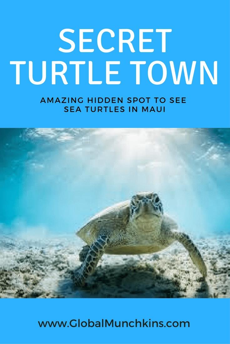 I Ve Discovered A Hidden Gem The Secret No Snorkel