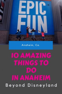 10 Amazing things to do in Anaheim