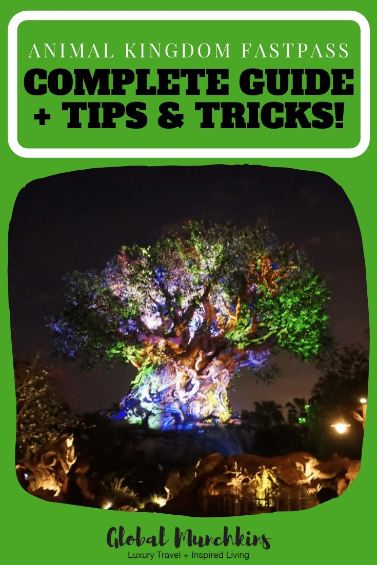Here is an ultimate guide to navigation Animal Kingdom FastPass so that you get the most out of your day! #animalkingdom #fastpass #guide #travelguide #travel