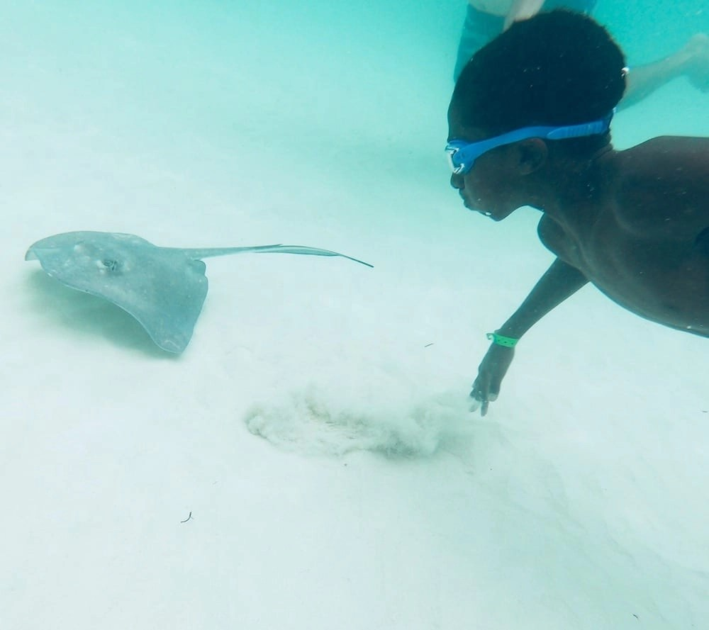 Stingray City Tours Grand Cayman - An Extraordinary Experience