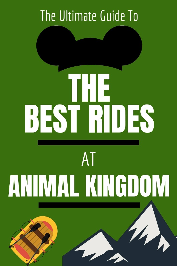 It's a Jungle Out There! A Guide to The Best Rides at Animal Kingdom in Disneyworld. From family Friendly to Thrill Seeking rides, this guide will help you determine what is best for your next Disney World Vacation #disneyword #animalkingdom #disney