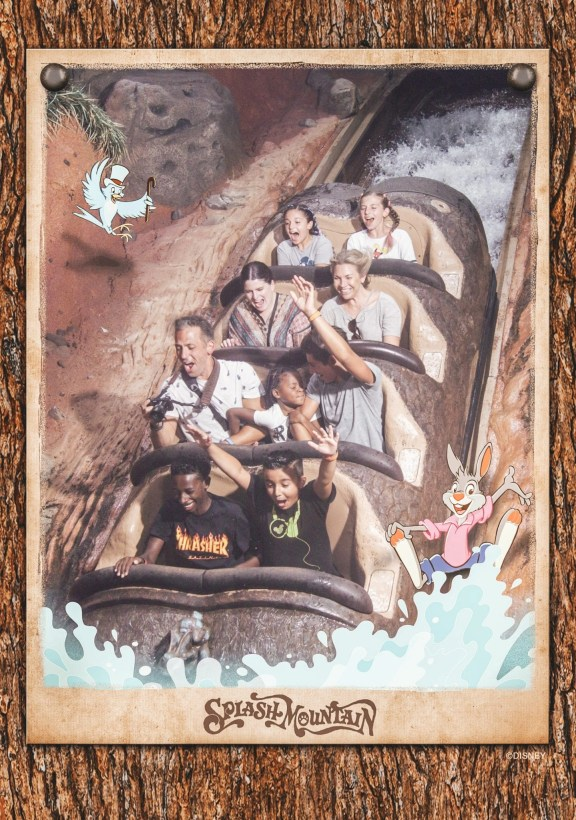 Disney World Tips - Splash Mountain Photo Pass