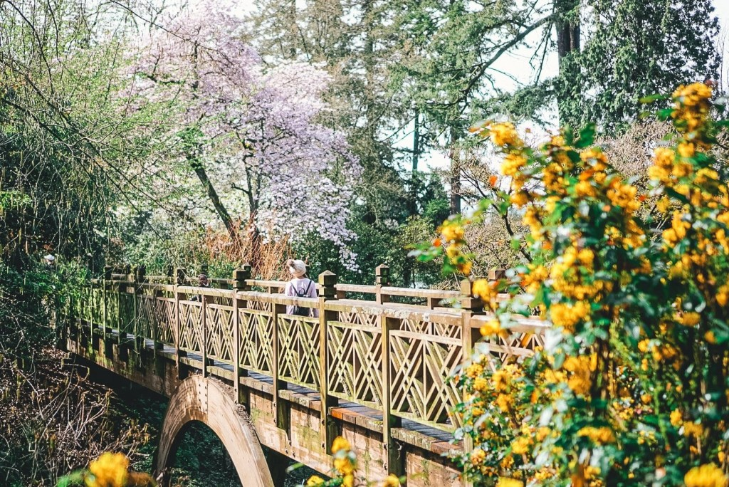 Things to do in Portland - Go for a hike