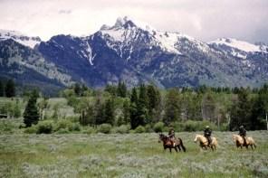 6 Things To Do In Jackson Hole Wyoming + 2 Bonuses