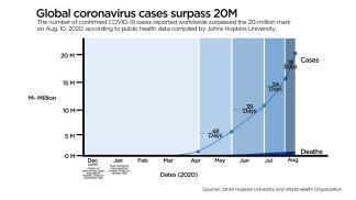 Global Coronavirus Case Count Surpasses Grim Milestone of 20 Million