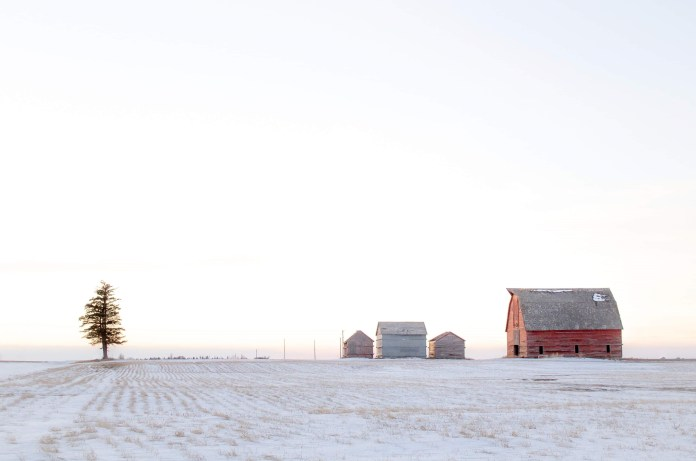 The Feb. 16 Your Saskatchewan photo of the day was taken by Lisa Diewold near Regina.