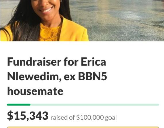 #EricaGoFundMe: Erica Ngozi Nlewedim fundraiser clocks $15, 343, 189 people donated so far