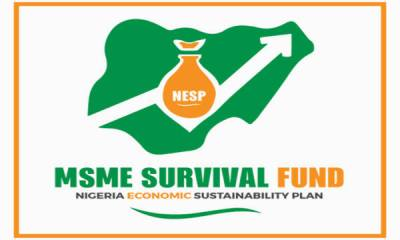Reasons Why FG changes Survival Fund website