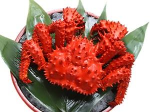 Hanasakigani - Hanasaki Crab Image
