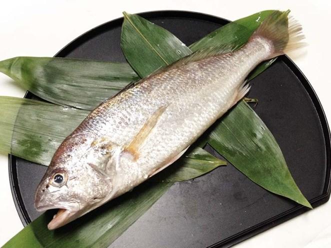 Ishimochi - White croaker