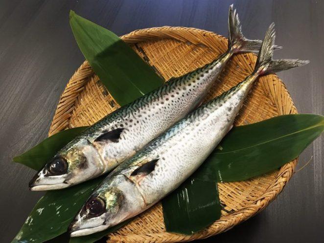 Gomasaba - Mackerel