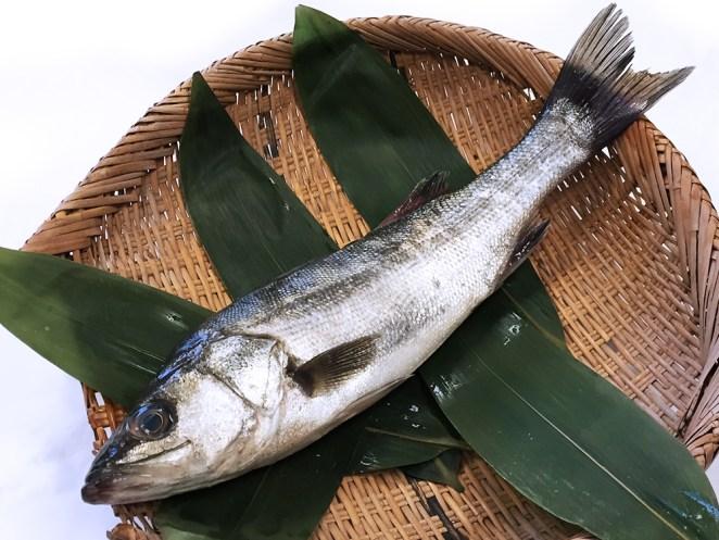Suzuki - Japanese Seabass